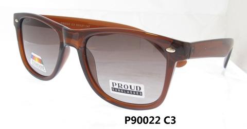 P90022C3
