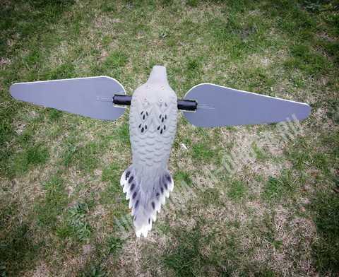 Чучело голубя (горлица) с вращающими крыльями Lucky Dove HD