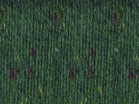 Fortissima Tweed 3104