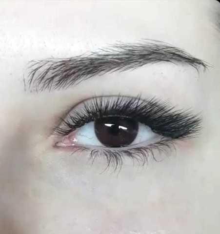 Оттеночные темно карие линзы для Светлых глаз Marquise Solo Dark brown (темно карие )  /Плюсовые диоптрии