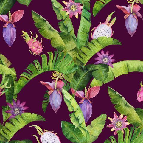 Бананы, пассифлора и драгонфруты на фиолетовом. Акварель