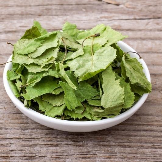 Травы Берёза, лист betula-leaf-01.jpg