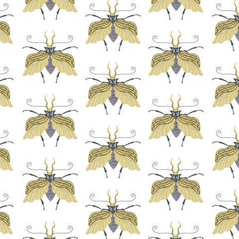Жуки серо-жёлтые
