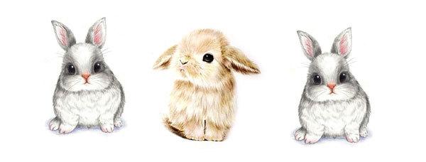 Водорастворимая бумага Кролики рисунки