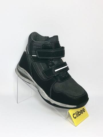Clibee P256