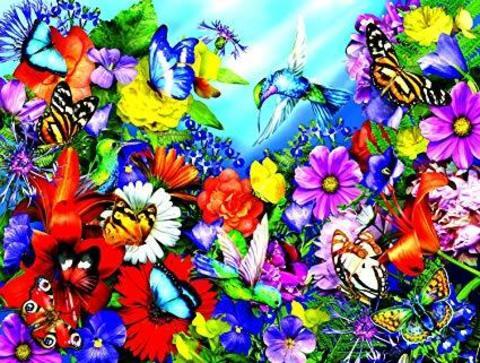 Картина раскраска по номерам 40x50 Цветы и бабочки