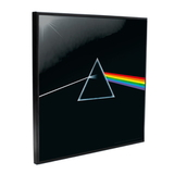 Pink Floyd / Dark Side Of The Moon - Crystal Clear Picture (Настенная Картина)