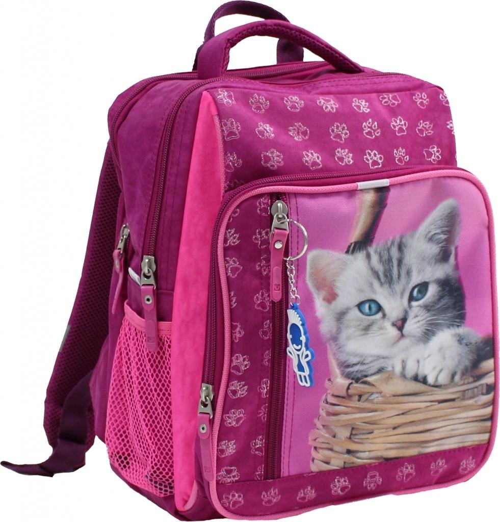 Школьные рюкзаки Рюкзак школьный Bagland Школьник 8 л. Малина (котенок в корзинке) (00112702) 6b050305727cf58f619ee76f40697abf.JPG