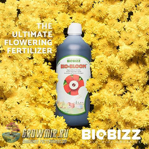 Bio-Bloom BioBizz 5 л