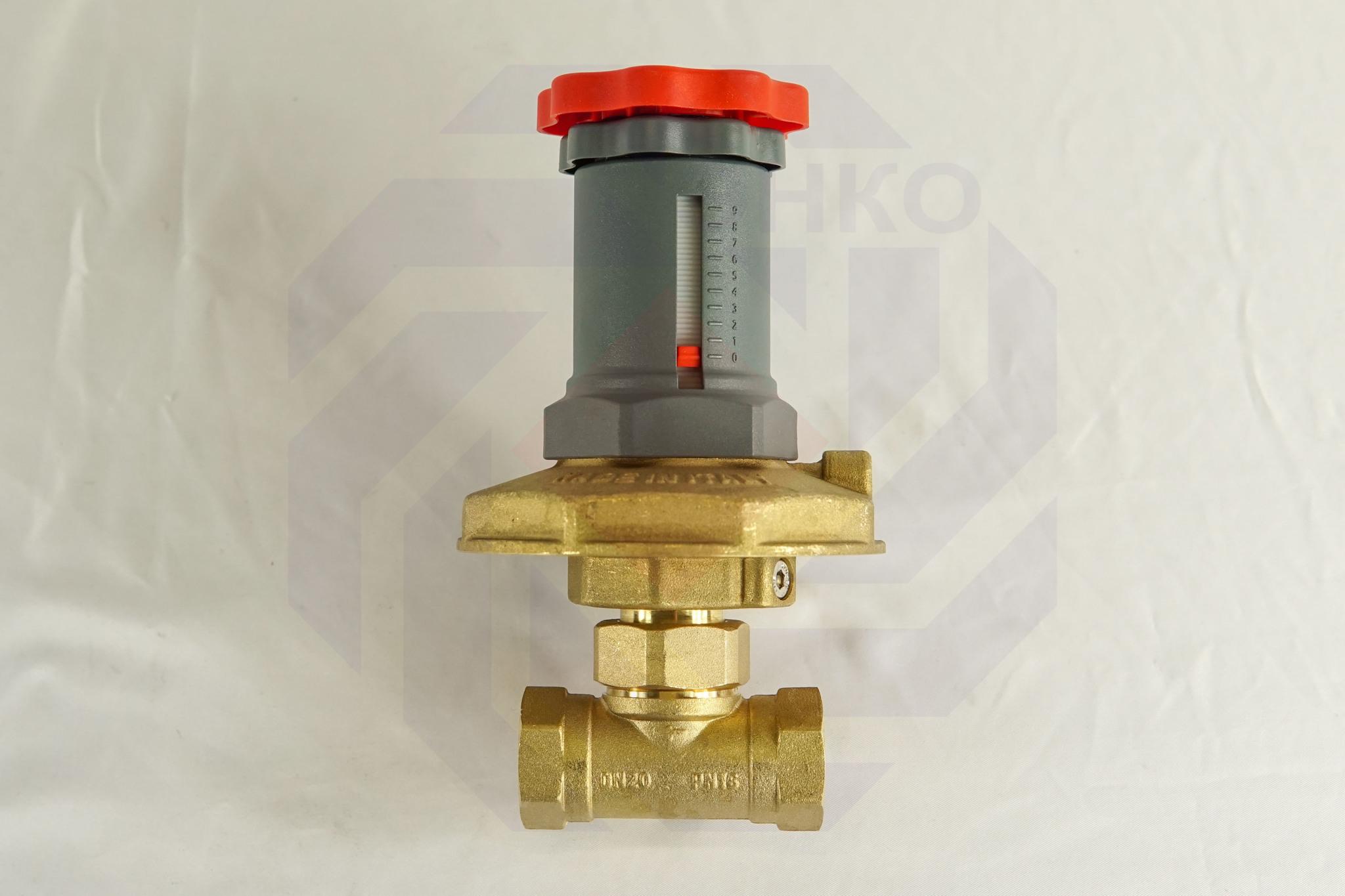 Регулятор перепада давления GIACOMINI R206C DN 20