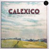 Calexico / The Thread That Keeps Us (LP)