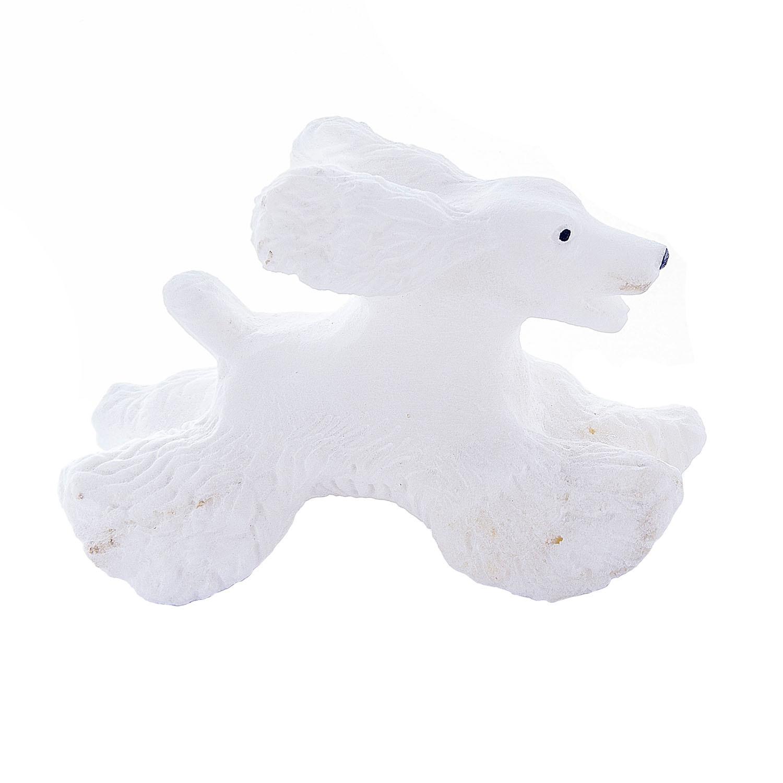 Белый спаниель