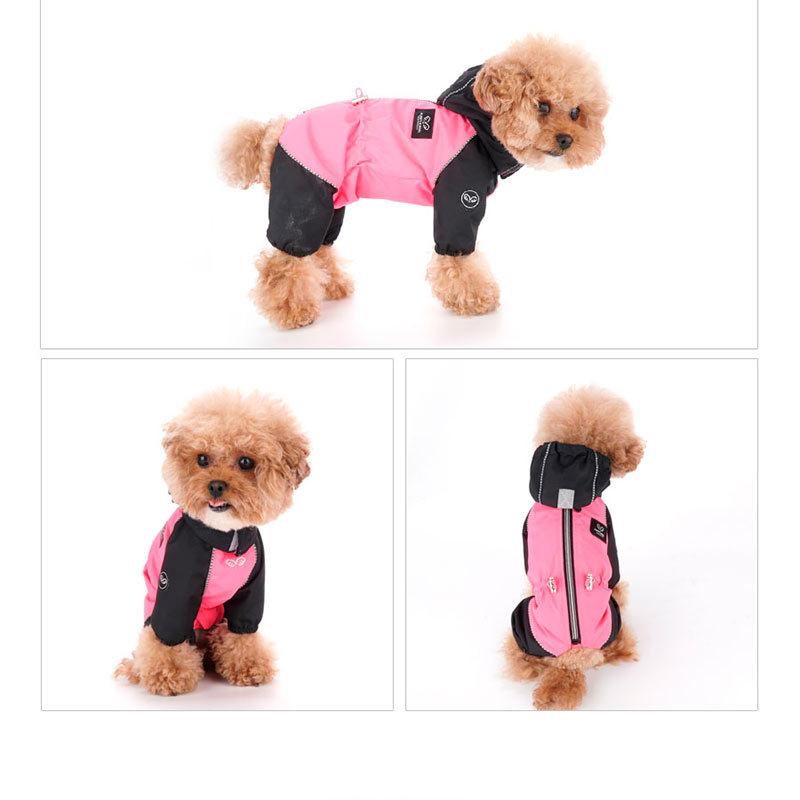 дождевик для собаки девочки