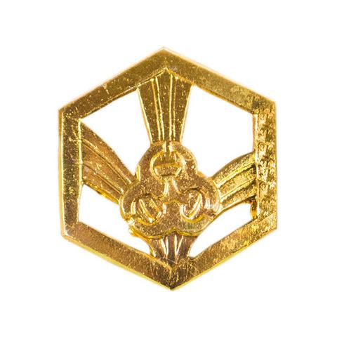 Эмблема петличная Войска РХБЗ, металл. золотой