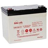 Аккумулятор EnerSys DataSafe 12HX135FX ( 12V 28Ah / 12В 28Ач ) - фотография