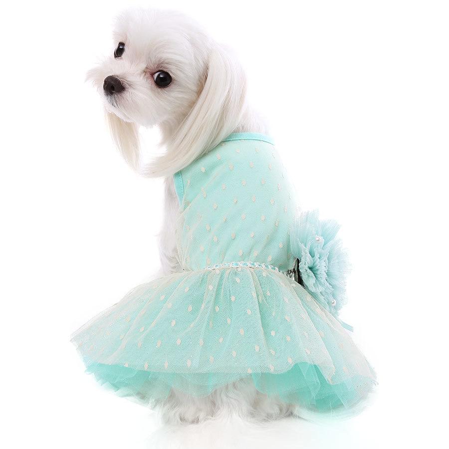 вечернее платье для мальтезе купить