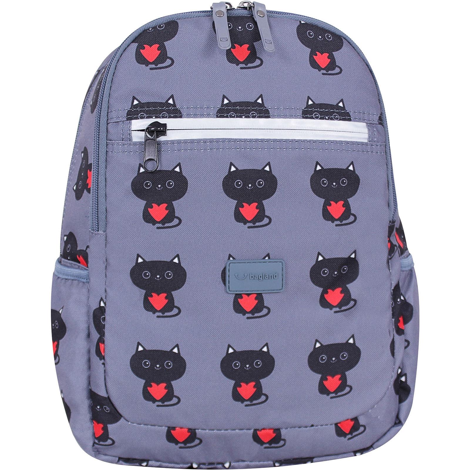 Молодежные рюкзаки Рюкзак Bagland Young 13 л. сублімація 750 (00510664) IMG_1668суб.750.JPG