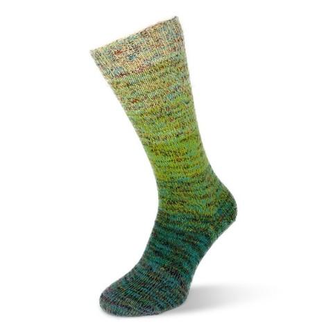 Носочная пряжа Flotte Socke Regenbogen Multi 1486 купить