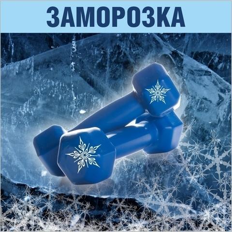 https://static-sl.insales.ru/images/products/1/3803/299675355/large_site_orange_zamorozka2.jpg