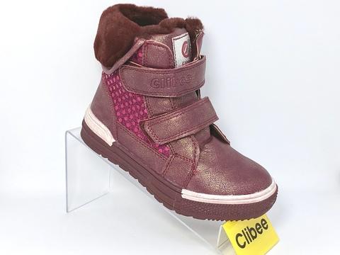 Clibee (зима) H156 Wine 27-32