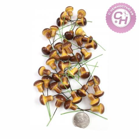 Грибы коричневые на проволоке 1,6 см, 10 шт.