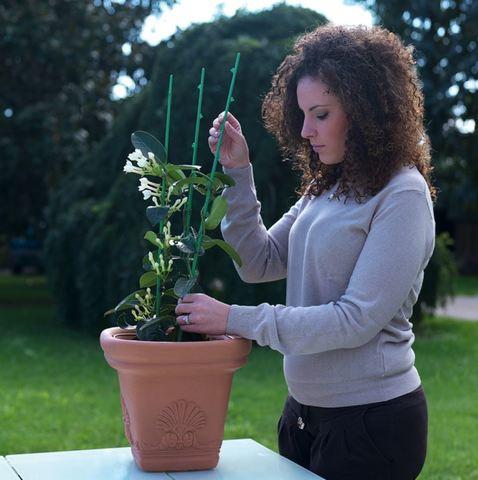 Подпорка для растений DiMartino, 5шт