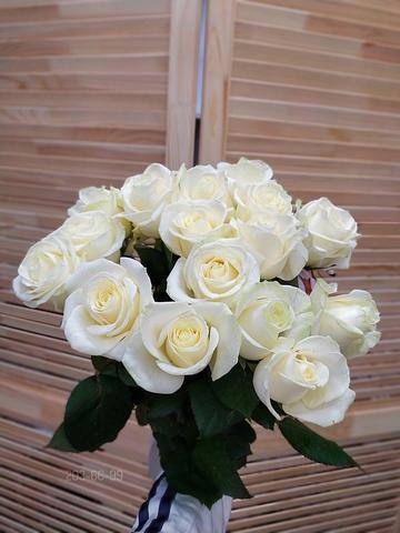 17 белых роз #16731