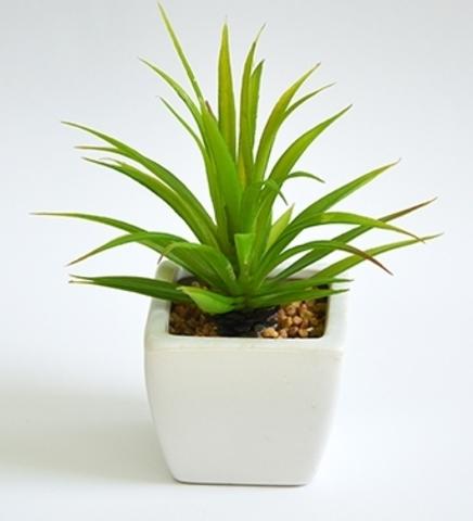 Растение иск.Суккулент Тилландсия в кашпо 19 см