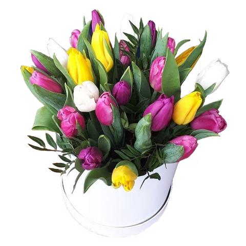 Коробка с тюльпанами белая 1