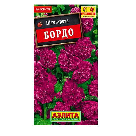Шток-роза Бордо   (Аэлита)
