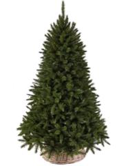 Triumph tree ель Лесная красавица 1,85 м зеленая