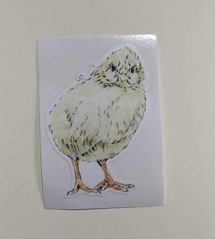 Наклейка «Цыпленок»