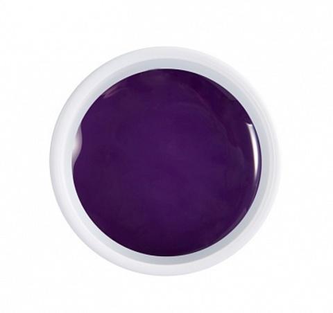 ARTEX artygel Фиолетовый 042 5 гр. 07251042