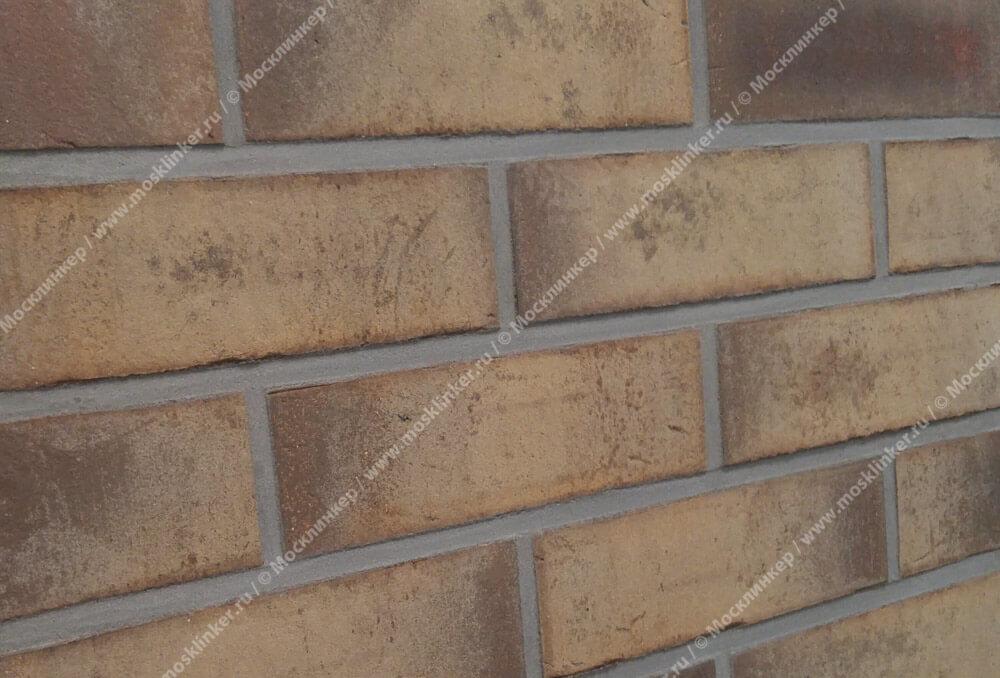 Feldhaus Klinker - R931NF14, Vario Geo Carinu, 240х71х14 - Клинкерная плитка для фасада и внутренней отделки
