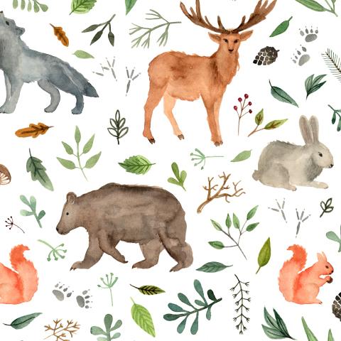 Forest team. Woodland animals. Лесные звери