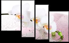 """Модульная картина """" Белая орхидея"""""""