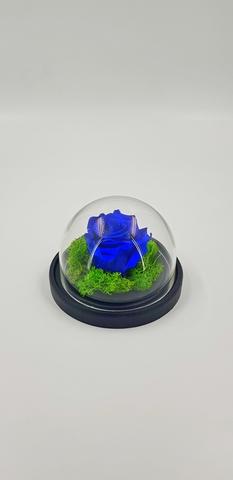 Роза MIMI 690 руб.Оптом. Выс*Диам*Бутон (10*12*4 см). Цвет Синий.