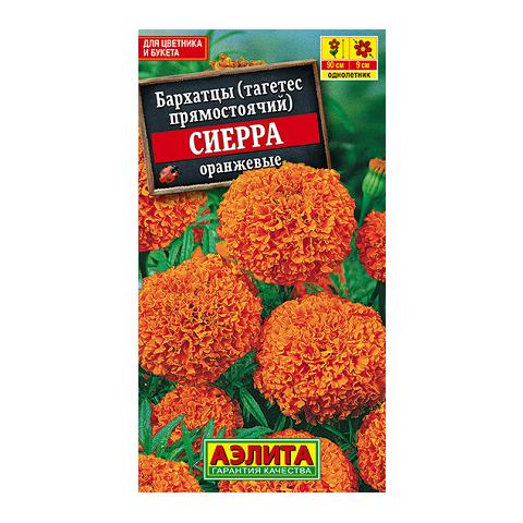 Бархатцы Сиерра оранжевые (Аэлита)