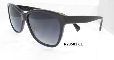 R23581C1