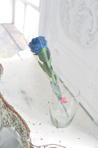 Роза на стебле King Оптом Высота*Бутон (50см*7-8см) Цвет синяя