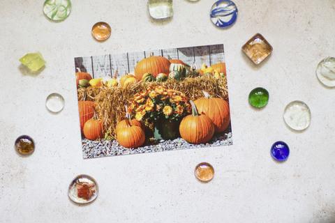Осенние тыквы