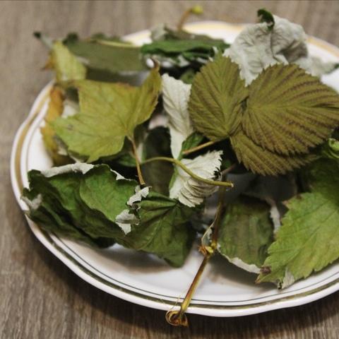 Малина, лист