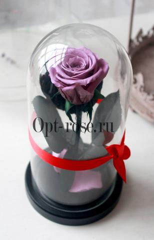 Роза в колбе 850р Micro Оптом Выс*Диам*Бутон (22*11*5см) Цвет Сиреневая