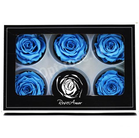 Стабилизированный Бутон Розы Rose Amour XL. Цвет Голубой (Диаметр 6-7см)