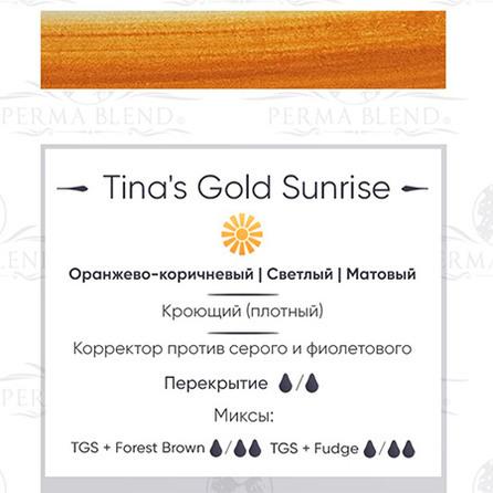 """TINA'S GOLD SUNRISE"" пигмент для бровей. Permablend"