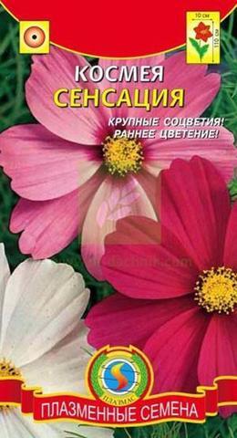 Семена Космея Сенсация (смесь)