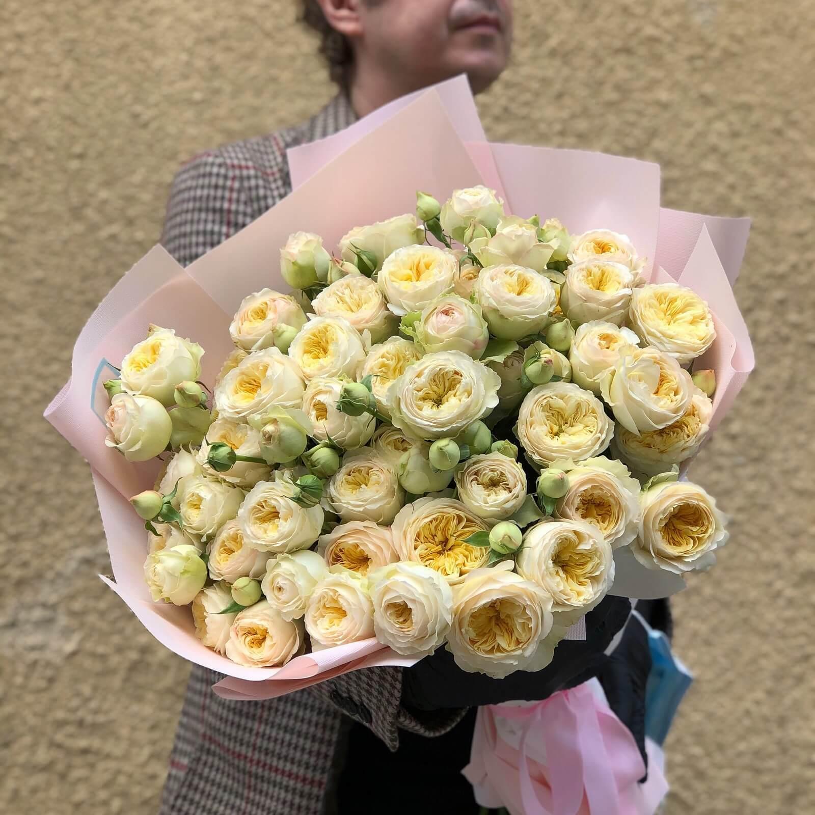 Роза Royal Park