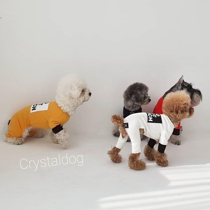 Костюмы для собак фото