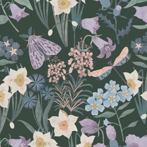 Полевые цветы, мотылёк, стрекоза на тёмном