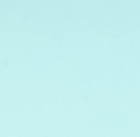 Фоамиран (лист: 60х70см, толщина 0,8 мм) Цвет:мятный (24)